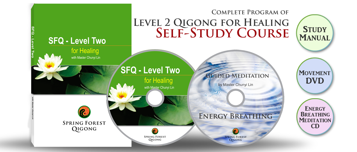 spring forest qigong level 2 manual pdf